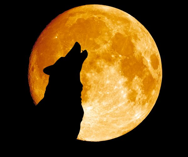 Look out for a Wolf Moon over Manchester this New Year