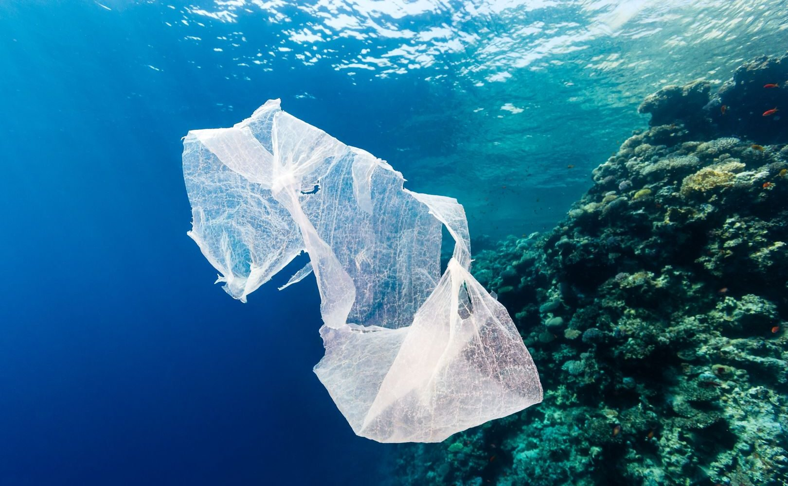 New £60m government fund to tackle global plastic pollution
