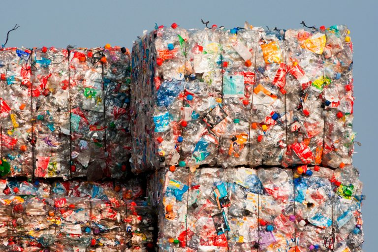 Government has lost its grip on packaging recycling obligations system, suggests report